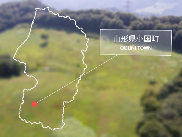 市野沢牧場:小国町