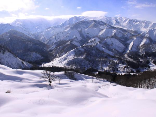 雪の積もる樽口峠